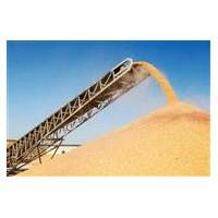 崇州蜀窖酿酒公司长期大量求购玉米小麦高粱碎米糯米木薯淀粉等