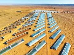 甘肃高台:戈壁滩上建高标准温室(图)