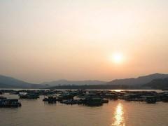 南京市举行增殖放流活动 修复渔业资源生态(图)