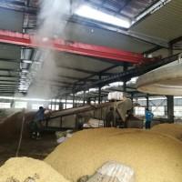 华联酒业求购糯米高粱玉米大米碎米淀粉豆类小麦等原料