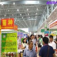 2019(湖北)国际种子交易会