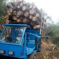 农用毛竹运输车