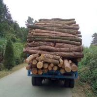 农用毛竹运输车厂家直销可定制各种配置