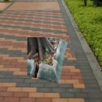 深圳梧桐工业园区缺口斜角路牙立砖树池铺土砖同城送货店联系电话