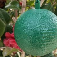 粘虫球哪家好-信誉好的诱蝇球厂家推荐
